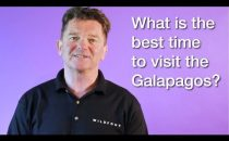 What is the best time of year to visit The Galapagos